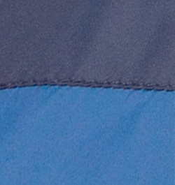 Navy Bluebird